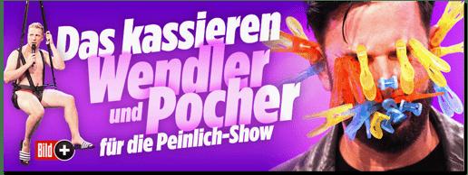 Screenshot Bild.de - Das kassieren Wendler und Pocher für die Peinlich-Show