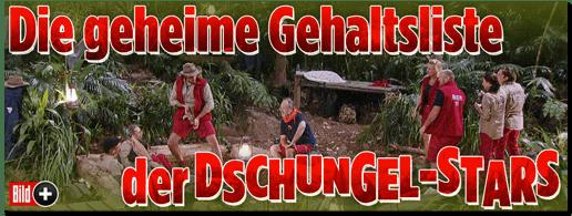 Screenshot Bild.de - Die geheime Gehaltsliste  der Dschungel-Stars