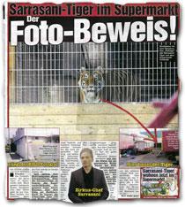 """""""Sarrasani-Tiger im Supermarkt: Der Foto-Beweis!"""""""