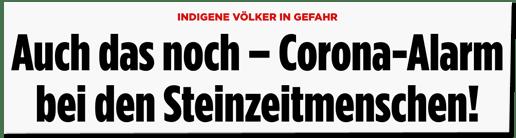 Screenshot Bild.de - Indigene Völker in Gefahr - Auch das noch – Corona-Alarm bei den Steinzeitmenschen!