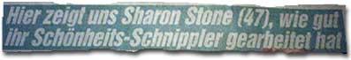 Sharon Stone (47): So gut hat ihr Schönheits-Schnippler gearbeitet