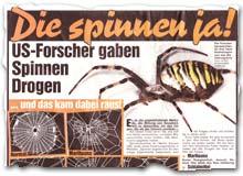 """""""Die spinnen! ja"""
