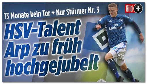 Screenshot Bild.de: 13 Monate kein Tor, nur Stürmer Nr. 3 - HSV Talent Arp zu früh hochgejubelt