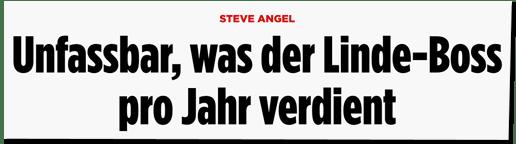 Screenshot Bild.de - Steve Angel - Unfassbar, was der Linde-Boss pro Jahr verdient