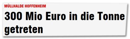 MÜLLHALDE HOFFENHEIM - 300 Mio Euro in die Tonne getreten