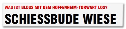 WAS IST BLOSS MIT DEM HOFFENHEIM-TORWART LOS? - SCHIESSBUDE WIESE