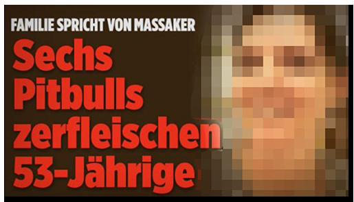 """Screenshot von der BILD.de-Startseite: """"Familie spricht von Massaker - Sechs Pitbulls zerfleischen 53-Jährige"""", dazu ein großes Foto der Frau"""
