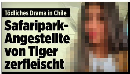 """Screenshot von der BILD.de-Startseite: """"Tödliches Drama in Chile - Safaripark-Angestellte von Tiger zerfleischt"""", dazu ein großes Foto der jungen Frau"""