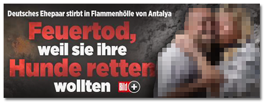 """Screenshot von der BILD.de-Startseite: """"Deutsches Ehepaar stirbt in Flammenhölle von Antalya - Feuertod, weil sie ihre Hunde retten wollten"""", dazu ein großes Foto des Paares"""