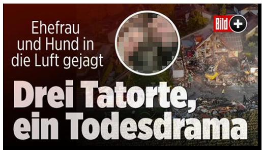 """Screenshot von der BILD.de-Startseite: """"Ehefrau und Hund in die Luft gejagt - Drei Tatorte, eon Todesdrama"""", dazu ein Foto des zerstörten Hauses sowie ein Foto der Frau, ihres Mannes und ihres Hundes, sowie das BILD-Plus-Logo"""