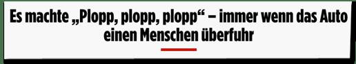 Screenshot Bild.de - Es machte plopp, plopp, plopp - immer wenn das Auto einen Menschen überfuhr