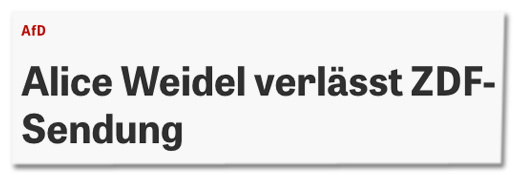 Screenshot Zeit Online - AfD - Alice Weidel verlässt ZDF-Sendung