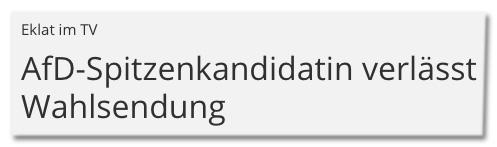 Screenshot MDR.de - Eklat im TV - AfD-Spitzenkandidatin verlässt Wahlsendung