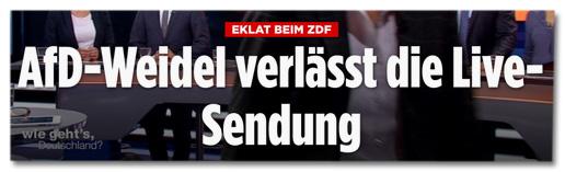 Screenshot Bild.de - Eklat beim ZDF - AfD-Weidel verlässt die ZDF-Sendung