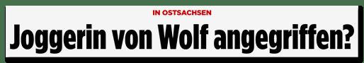 Screenshot Bild.de: Joggerin von Wolf angegriffen?