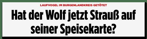Screenshot Bild.de: Hat der Wolf jetzt Strauß auf seiner Speisekarte?