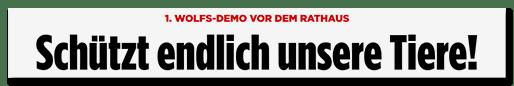 Screenshot Bild.de: Schützt endlich unsere Tiere!