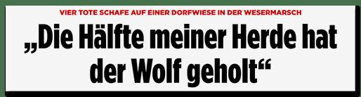 """Screenshot Bild.de: """"Die Hälfte meiner Herde hat der Wolf geholt"""""""