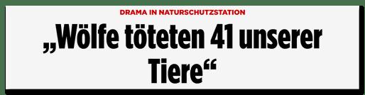 "Screenshot Bild.de: ""Wölfe töteten 41 unserer Tiere"""