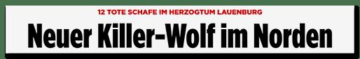 Screenshot Bild.de: Neuer Killer-Wolf im Norden