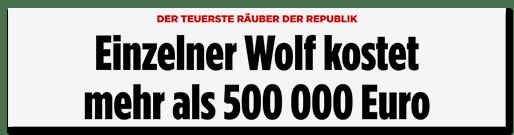 Screenshot Bild.de: Einzelner Wolf kostet mehr als 500000 Euro