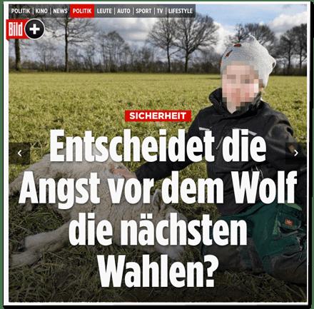 Screenshot Bild.de - Sicherheit - Entscheide die Angst vor dem Wolf die nächsten Wahlen?